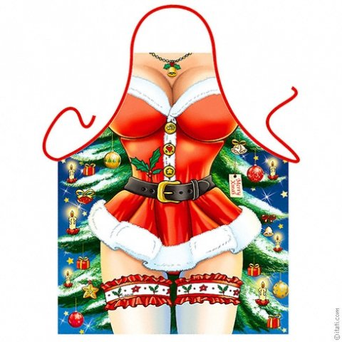 Sexy Santa schort vrouw foto