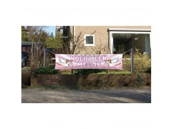 Geboorte banner meisje