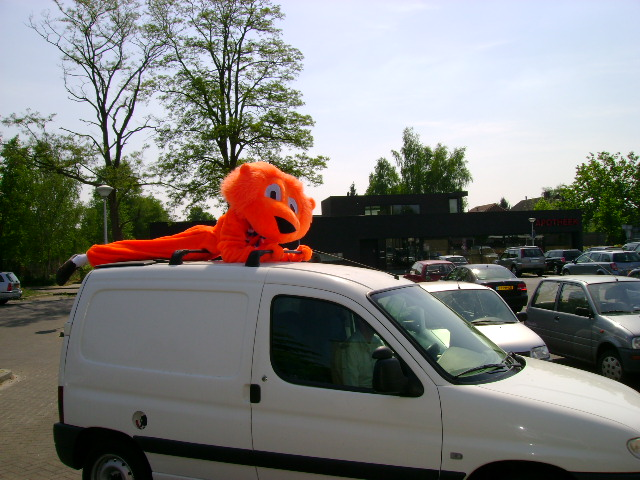 Oranje leeuwenpak foto